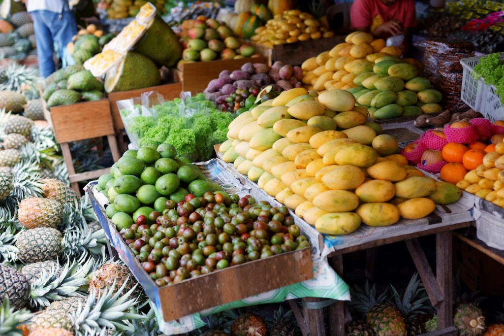 Fruits as Nutrients to Support the Immune System