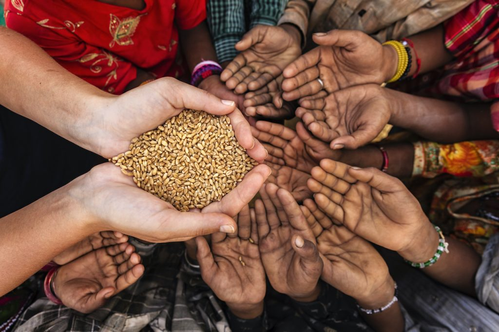 children holding hands for getting seeds
