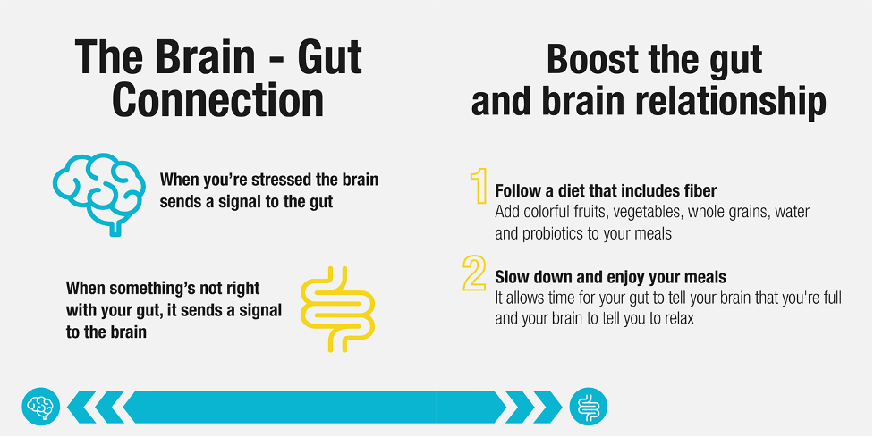 brain gut connection second brain